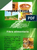 fibracruda-130923192317-phpapp01