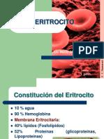 ERITROCITO diapositivas