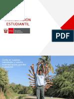 PPT Participación JEC