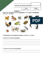 Guía Evaluada Vertebrado-Invertebrado