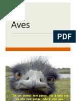 Aula - Aves
