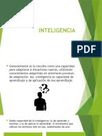 INTELIGENCIA 1.pptx