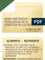 Bases Anatomicas y Fisiologicas de La Digestion