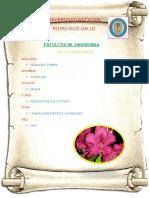 Plantas Reistentes a Las Heladas