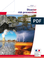 French Policy on Disaster Risk Prevention