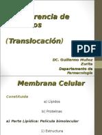 translocacion