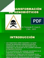 biotransformacion_xenobioticos-1