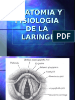 Anat- Fisio de Laringe