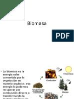 06 biomasa