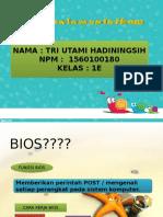 PPT BIOS