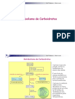 carboidrato.pdf