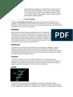 Los 20 Aminoácidos Que Forman Parte de Las Proteínas Son
