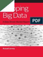 mapping-big-data.pdf