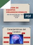 004_PEDLCO - Gestión de Equipos Organizacionales