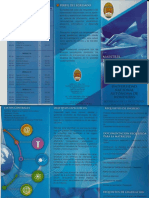 Brochure Maestría en Gestión Informática (1)