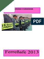Seguridad Ciudadana Dyanita