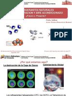 02_Refrigerantes_naturales_Fondoin.pdf