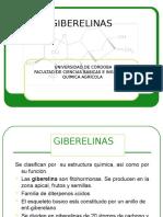 GIBERELINAS-1