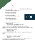 Calculul ratelor financiare