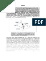TENDONES.pdf