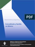 CONCUBINATO Y FAMILIA EN MÉXICO.pdf