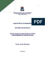 AW Obstetrícia apostila 2.pdf