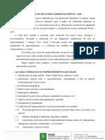 ROTEIRO DE RELATÓRIO AMBIENTAL PRÉVIO -RAP.docx