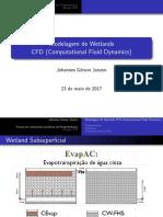 Uso de CFD para wetlands