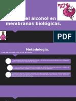 Efecto Del Alcohol en Las Membranas Biológicas(1)