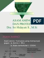 Asam Amino Dan Protein Kimia Organik III Baru