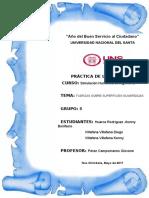 PL_fuerzas sobre superficies sumergidas_02.docx