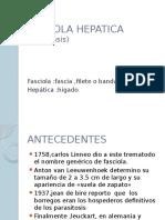 Fasciola Hepatica (Fasciolasis)