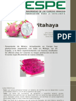 pitahaya modulo.pptx