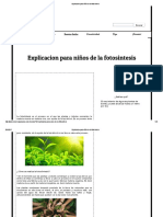 Explicacion Para Niños de La Fotosintesis