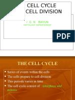 Cell Division - Baru2