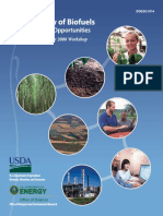 Biofuel Sustainability