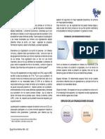 CAPITULO-II-ORGANIZACIONES-SOCIALES (1).pdf