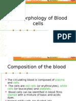 Blood morphology