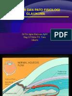 Anatomi Dan Fisiologi Glaukoma