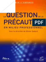 La Question de La Precaution