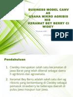 Zuan Mareta_155020301111047_bmc Bey Berry