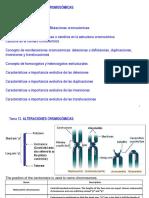 2016-17 Tema 12. Alteraciones Cromosomicas