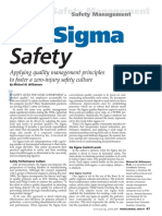 6 Sigma Safety_Williamsen