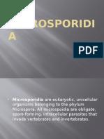 alyssamicrosporidia 2