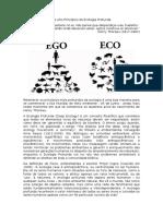 Os Oito Princípios da Ecologia Profunda