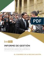 InformeGestionLizcano21Dic2016Baja