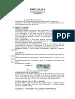 PracticA 065