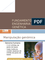 10-Fundamentos de Engenharia Genética (1)