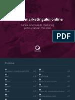 Ghidul  Marketingului Online