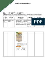 PROGRAMA DE ENSEÑANZA INDIVIDUAL.docx
